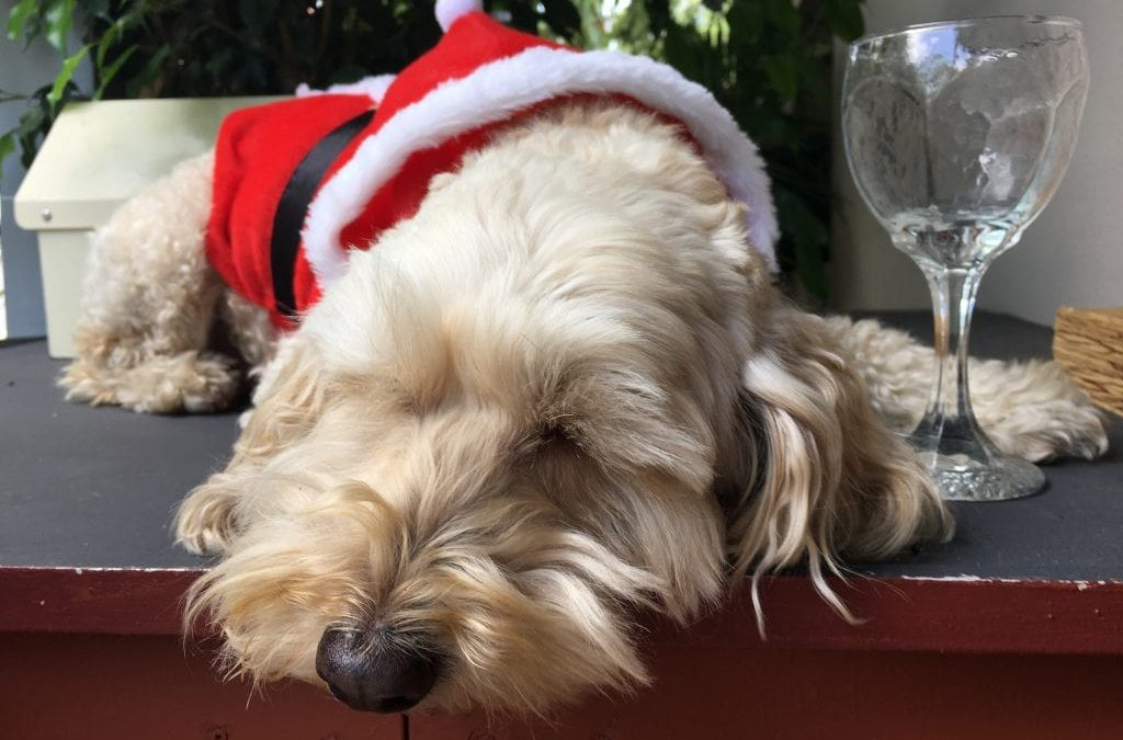 Xmas stress? What you can and can't do about the family